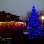 dekoracja świąteczna ogrodu