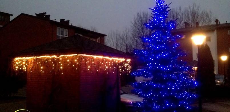 Iluminacje świetlne, dekoracja świąteczna ogrodu
